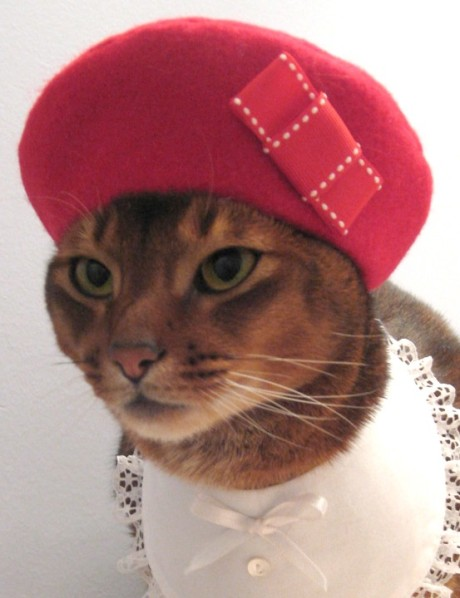 cute-red-cat-hat-beret